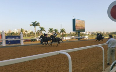 Greyville Racetrack